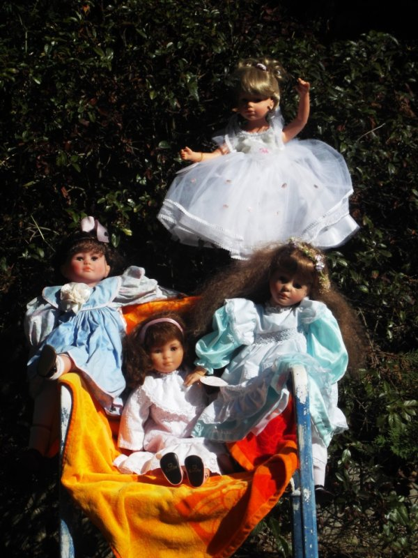 Les voici toutes réunies dans le jardin de Papy-Lys , elles vous souhaitent  avec moi , un très beau dimanche