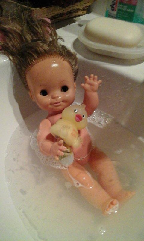 MA petite CIncia que je vous avais présenté dernièrement a enfin pris son bain ..
