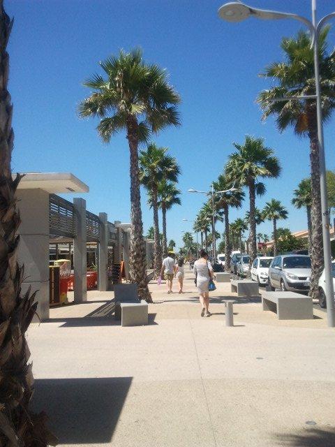 une belle balade sous les palmiers a Marseillan Plage