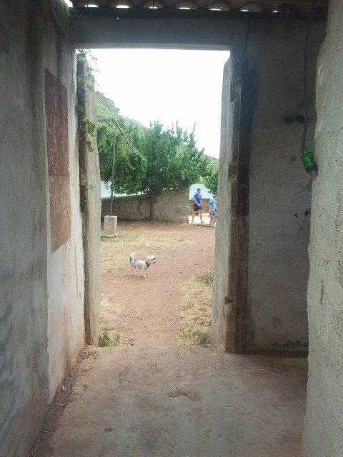 Pomponette se sent bien dans le village abondonne Ceilhes