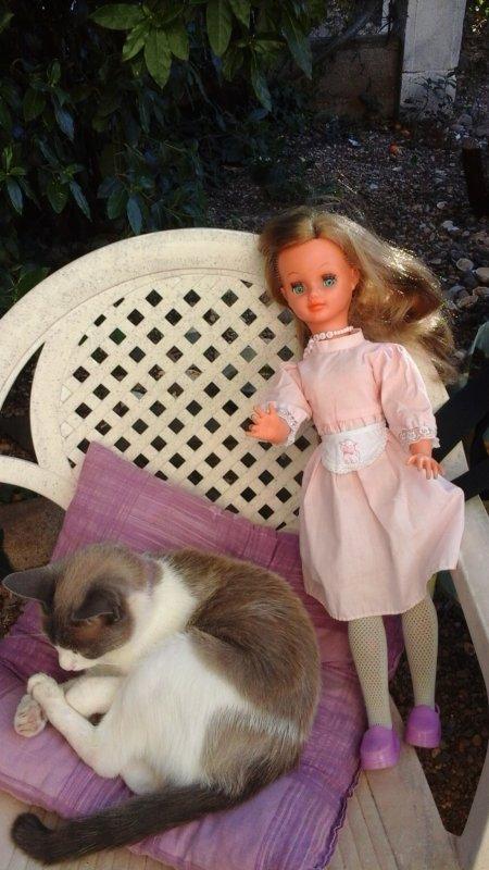 Delices de juillet : jardin de Marthe et la suite du pique nique de mes bouts de chou......