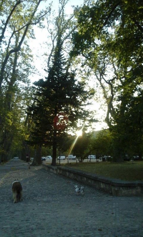 un beau rayon de soleil a Villeneuvette ....