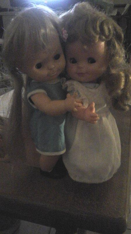 Deux exquis minois....non ce ne sont pas des poupees. ....mais des Cincia. .....en attendant d ouvrir mon cadeau à moi....bonne soirée
