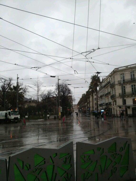 Ce matin ....une jolie découverte.... a Montpellier.,.