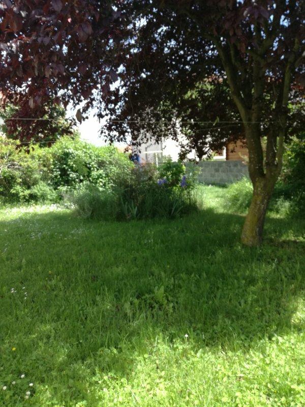 Le joli jardin en Auvergne....