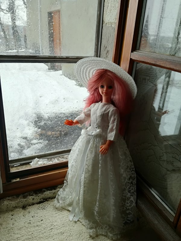 « Bell'à mariée » .....contemple la neige....