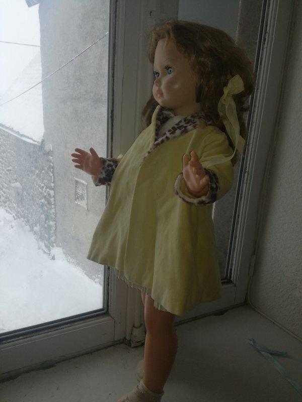 Ma jolie Bella contemple le paysage tout blanc....et elle vous souhaite avec moi un très bon vendredi.