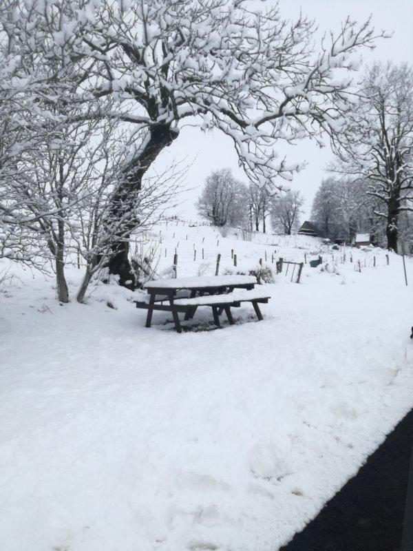 Et.... beaucoup beaucoup de neige dans le Puy de Dôme.... bonne après midi....