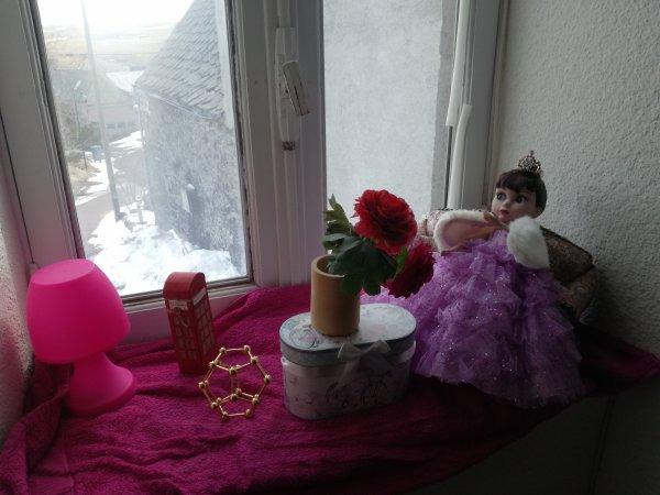 Patience....patiente dans son petit salon....la neige commence à fondre....