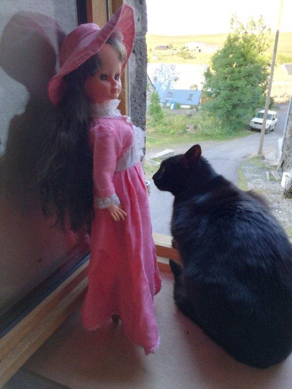 Ma belle Cathy prend un peu l air et elle voit que le fermier, au loin a bien commencé les foins....