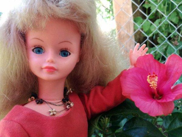 Cathy  est très contente, il y a encore des fleurs qui poussent dans le jardin...