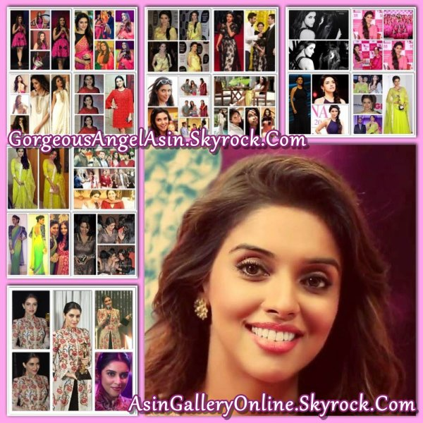 Asin in 2013 (Final Collage)
