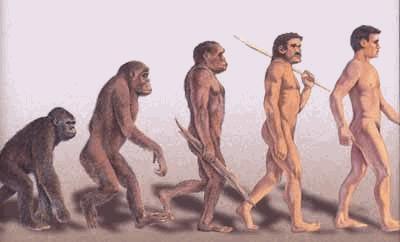 L'origine de l'Homme
