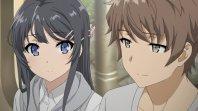 *~/Seishun Buta Yarou/~*
