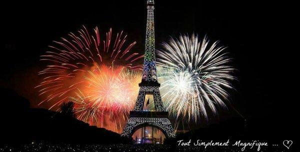 ☆ Feu d'Artifices du 14 Juillet au Trocadéro - Paris ☆