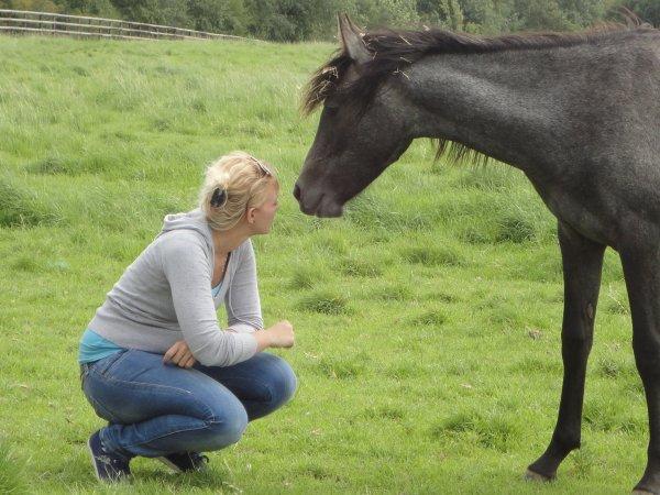 Le bonheur est dans le galop d'un cheval