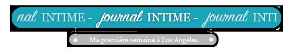 cinquième article - journal intime #002