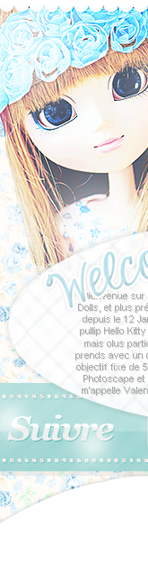 Bienvenue The-Pullips