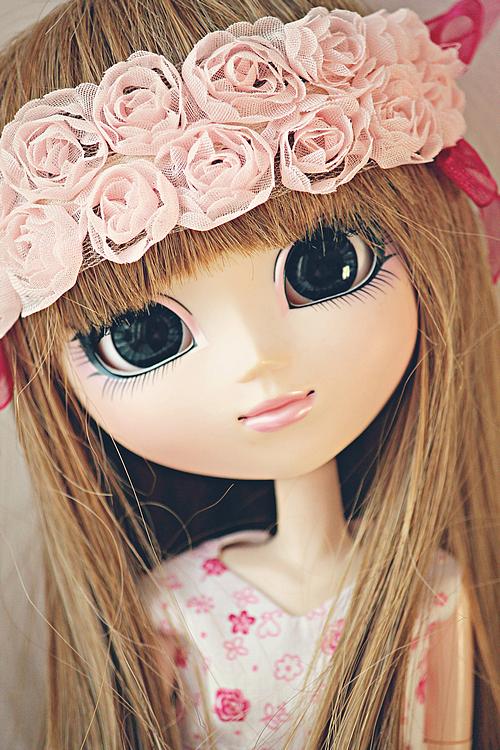 » Pink Dream•♪