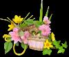 Pour mon amie Sylvie Capucine55500 & Eliane59 bis