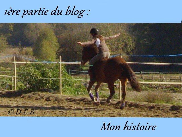 1ère partie du blog : Mon histoire