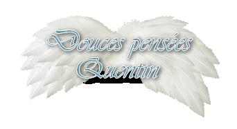 9 Ans Aujourd'hui le 5 juin 2013 que Quentin a rejoint les étoiles **Douces pensées bel Ange**