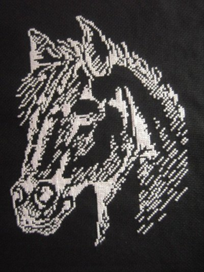 Horse Broderie