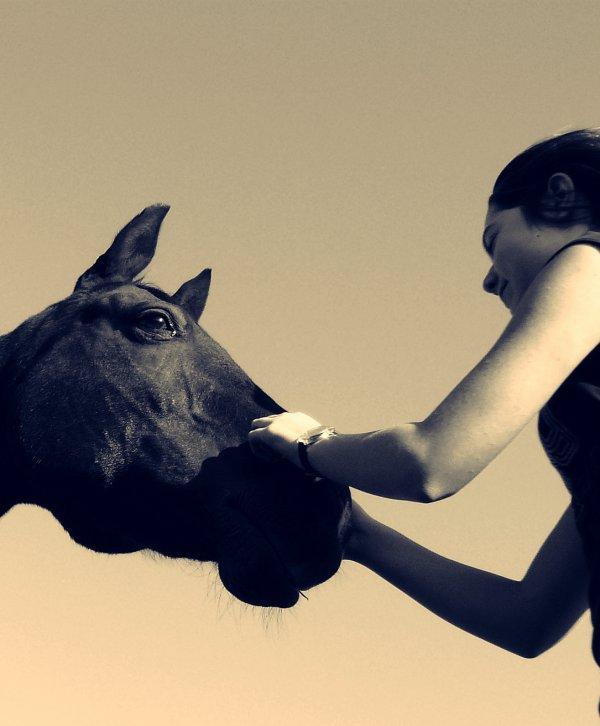 Tout le bonheur du monde se trouve sur le dos d'un cheval.