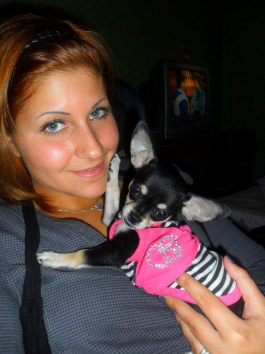 Mon chihuahua d'amour, Nina <3