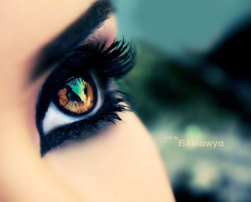 The eye sees a thing more clearly in dreams than the imagination awake