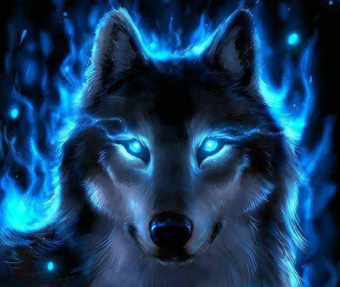 amour des loups