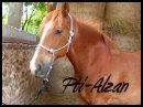 Photo de Pti-Alzan