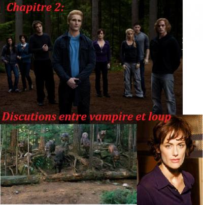 Chapitre 2: Discutions entre vampire et loup
