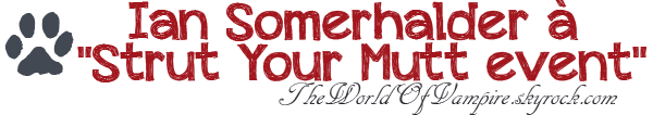 "Ian Somerhalder à ""Strut Your Mutt event"" - 22/09"