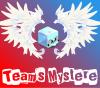 Teams-Mystere