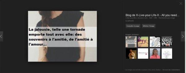 ○ Mon Blog, ma fierté ○