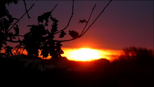 ...Levé de soleil...