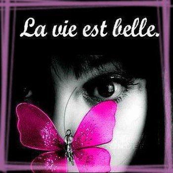 Les Bons Moments De La Vie !!!