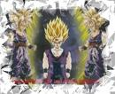 Photo de DBZ-Sangoku-291