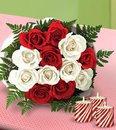 mes roses Pour ma femme !!!