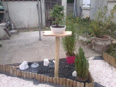 jardin zen bonsai étape 2