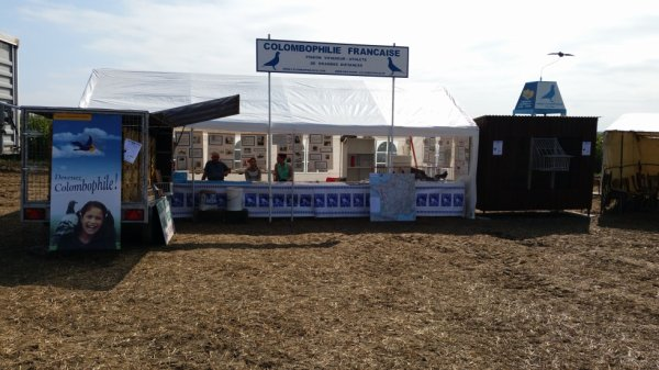 stand colombophilie