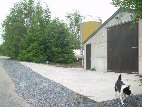 """Nous possèdons un élevage de poulets certifié biologique vendus sous le nom """"le coq des près"""""""