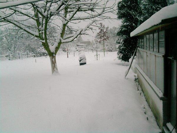 photo de neige 2010 (1)