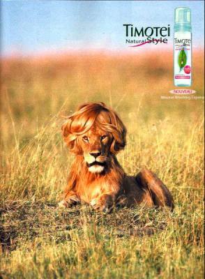parodie pub lion
