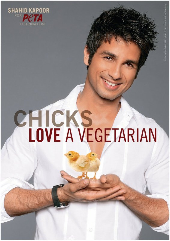 Shahid Kapoor est le Plus Sexy des Végétariens