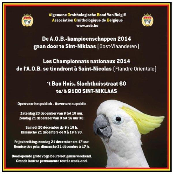 BELGISCH KAMPIOENSCHAP 2014