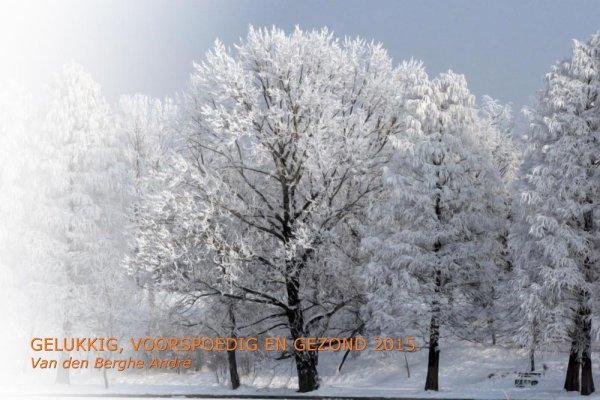 Happy New Year   -   Bonne Année   -  Feliz Año - Buon Anno  - Prosit Neujahr