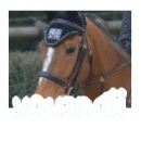 Photo de YOUandii
