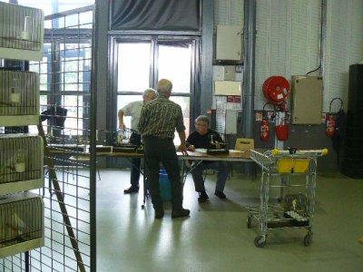 EXPOSITION   A  BRIVE LA GAILLARDE du 21 AU 26 SPTEMBRE 2010